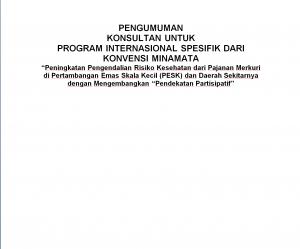 KERANGKA ACUAN  KONSULTAN UNTUK PROGRAM INTERNASIONAL SPESIFIK DARI KONVENSI MINAMATA